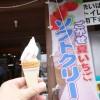 特産センターごかせ ミニソフトクリーム(五ヶ瀬町)